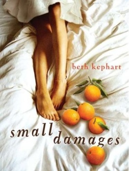 Cover of Beth Kephart's young adult novel Small Damages